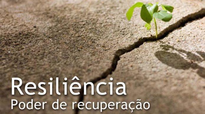 Significado portugues resiliente Tradução resiliente